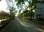 ภาพถ่าย มทร.ธัญบุรี 20-11-54 (15)