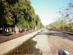 ภาพถ่าย มทร.ธัญบุรี 20-11-54 (28)